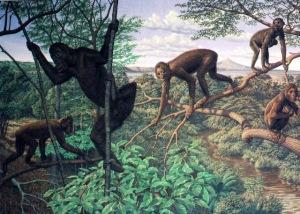 amnh2 Da sinistra, Shivapitekusu, proconsole