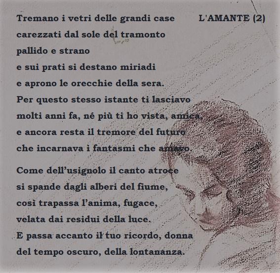 AMANTE 2