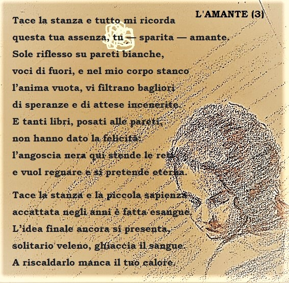 AMANTE 3